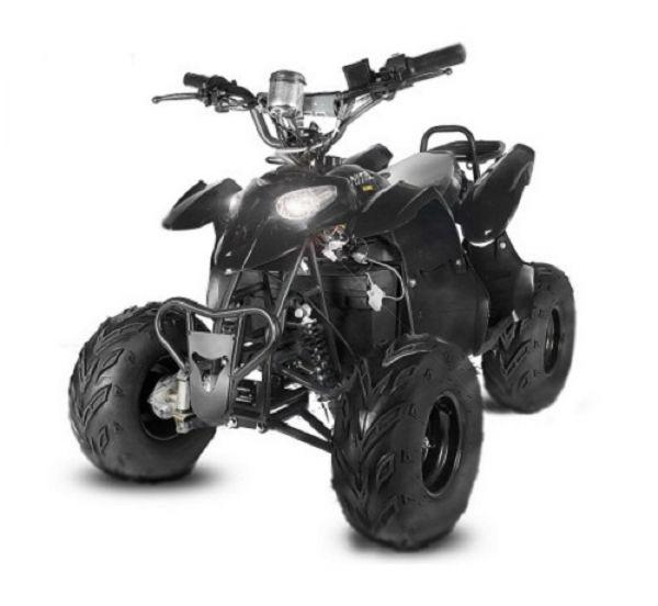 Eco Razer Quad Elektroquad Midiquad Atv Kinderquad 800 Watt 6 Zoll